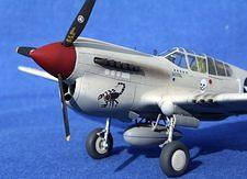 Hasegawa 1/48 P-40K - by Mark Sullivan - Murrells Inlet, South Carolina