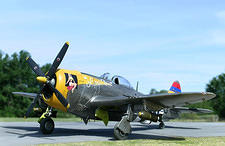 P-47D Little Ann IR2
