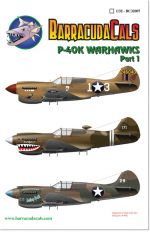 BC32007 P-40K Warhawks - Part 1 - 1/32 Scale