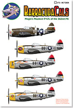 BC72038 Mogin's Maulers! P-47s of the 362nd FG